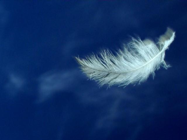 pena branca céu azul escuro